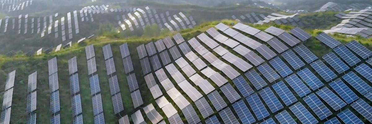 Rows of solar panels along the hillside